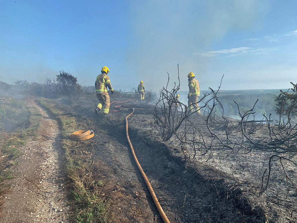 Fire crew at Puddletown Forest fire