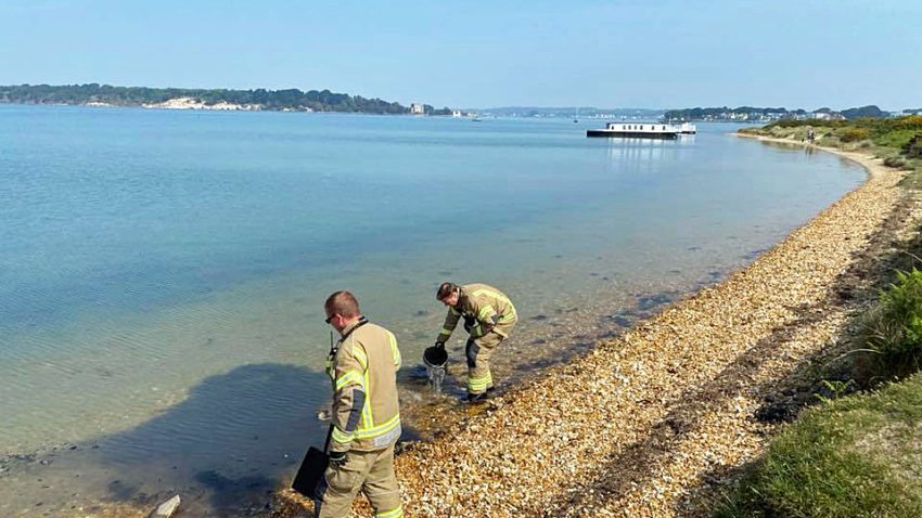 Shell Bay Beach fire extinguished by Swanage fire crew