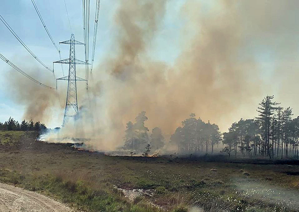 Wareham Forest Fire