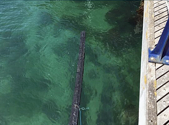 Planks from Swanage Pier thrown into the sea