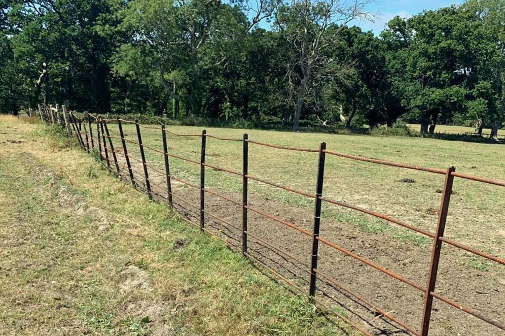 Metal fence at Creech Grange