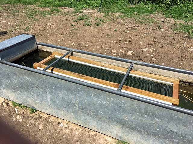Float in a water trough to prevent owls from drowning