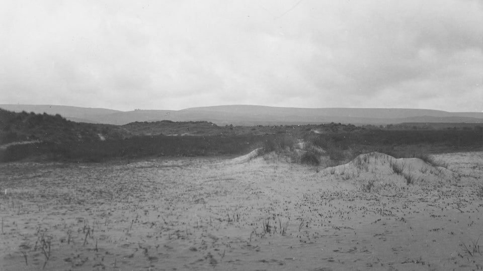 Central tongues in Studland in 1936
