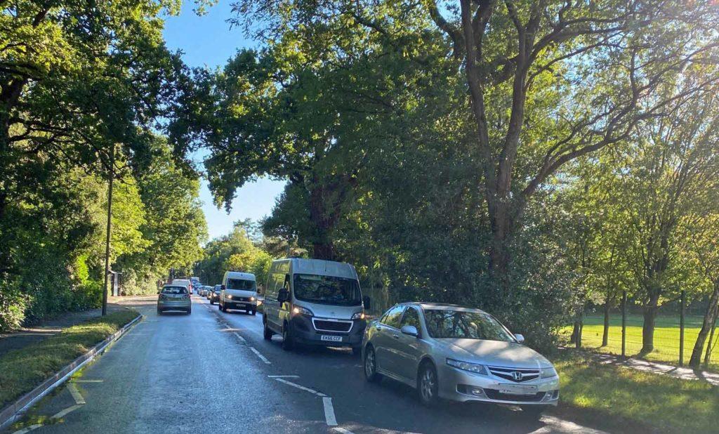 Fallen tree causes traffic queues