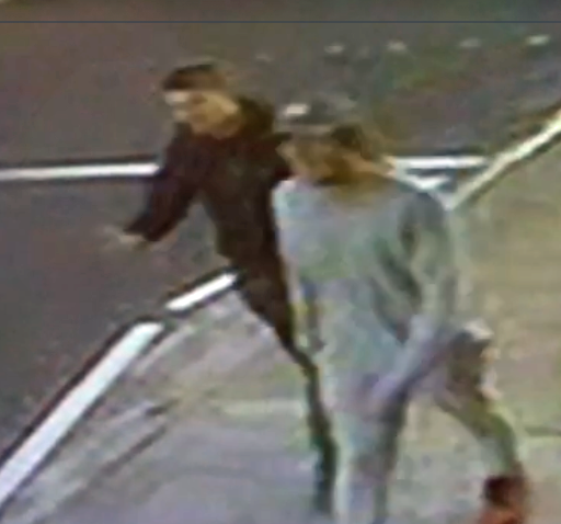 Two men suspected on theft captured on CCTV