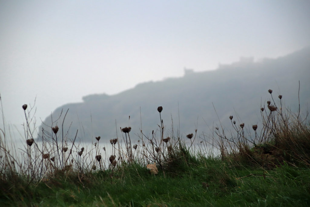 Fog across Durlston in December 2020
