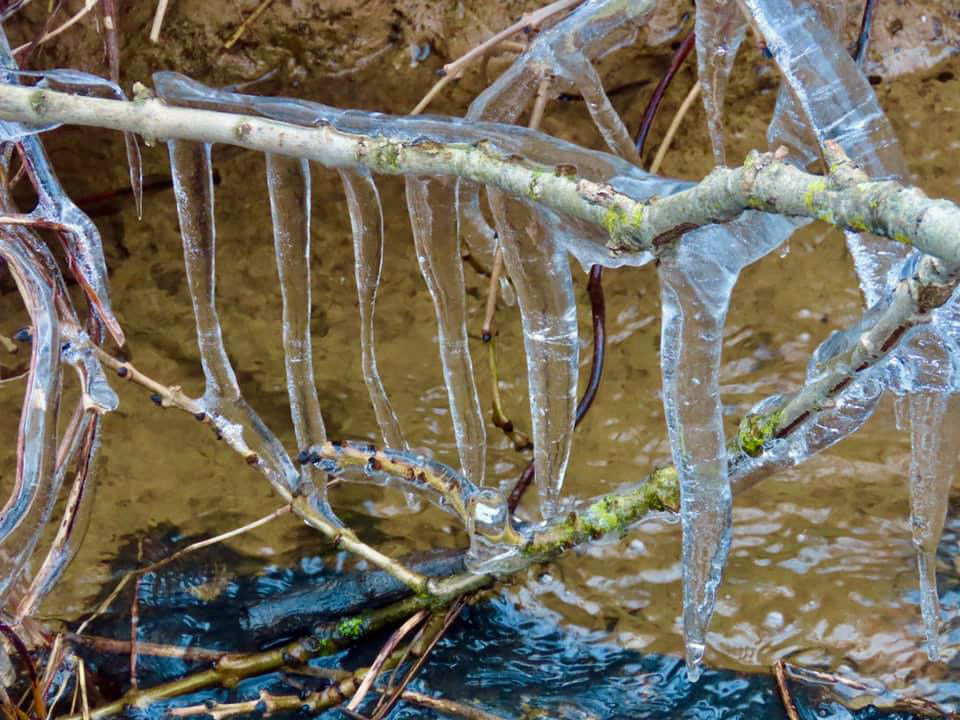 Icicles at Washpond Lane in Swanage
