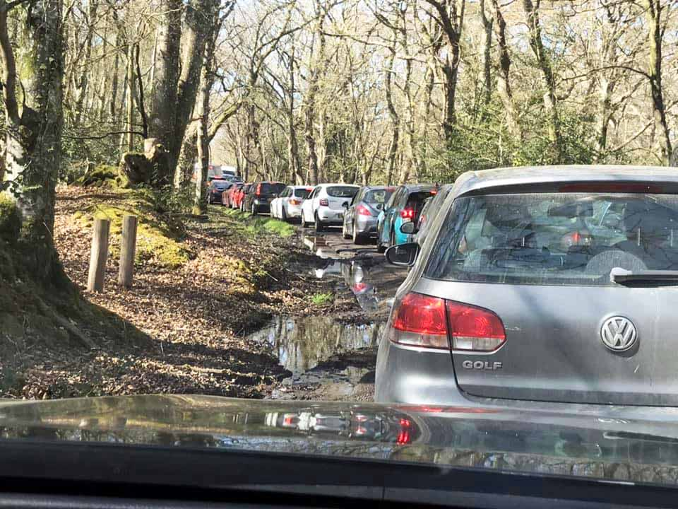 Cars stuck in diversion at Arne