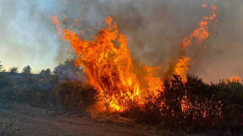 Heath fire near Wimborne