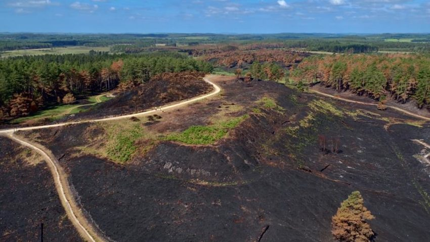 scorched aerial image