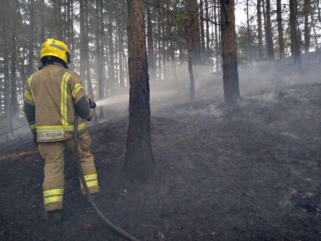 Firefighters attend St Leonards Fire