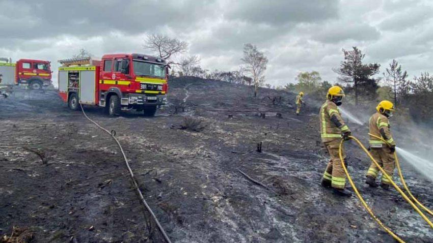 St Leonards Heath Fire