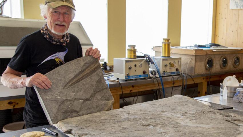 Steve Etches with an ichthyosaurus