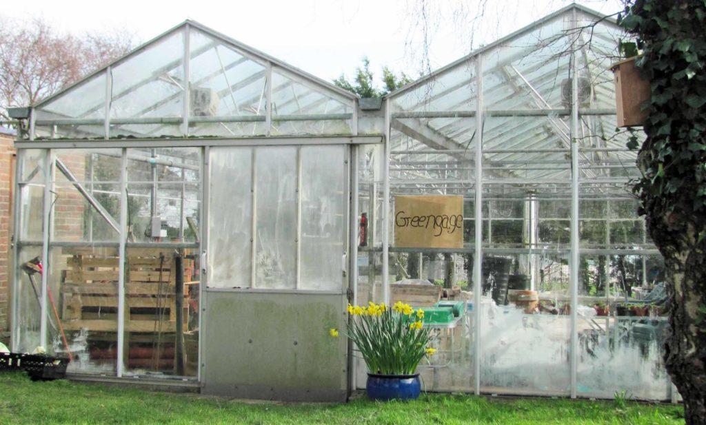 The Greenhouse February 2017
