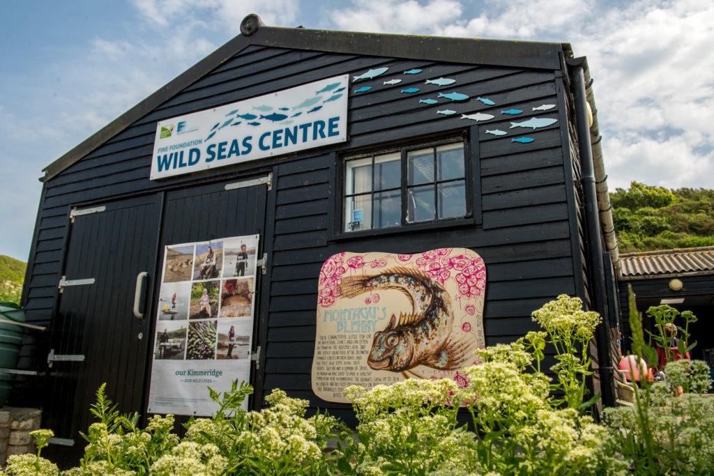 Wild Seas Centre at Kimmeridge