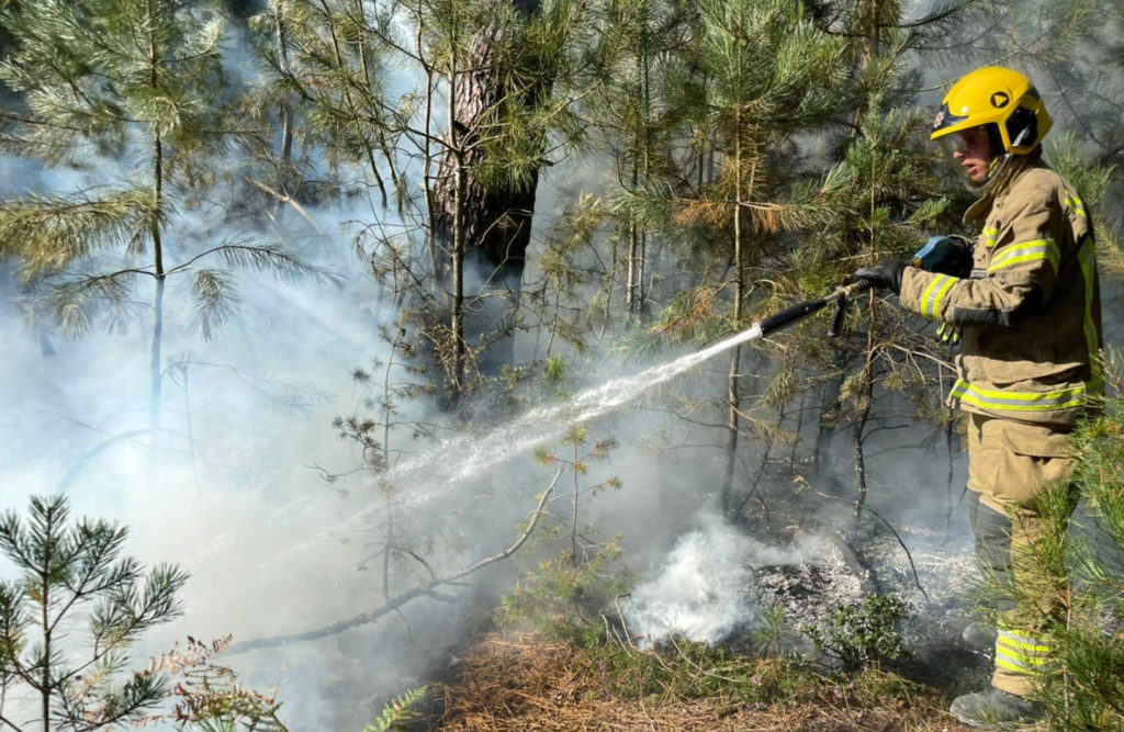 Fire in Wareham Forest being extinguished by firefighters