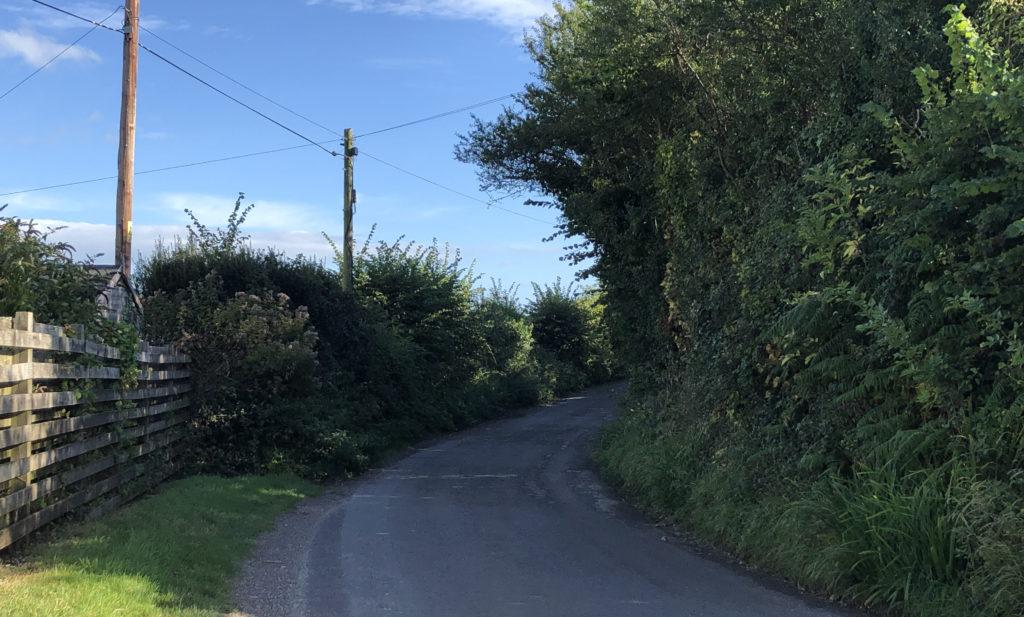 Darkie Lane in Swanage